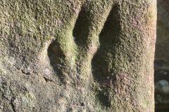 Stone scrapings