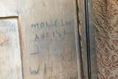 Elmdon - Molly Law, age 14, June