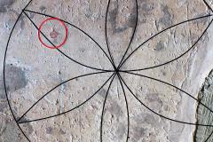 Daisy wheel, enhanced